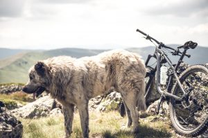 Mountain biking Albania